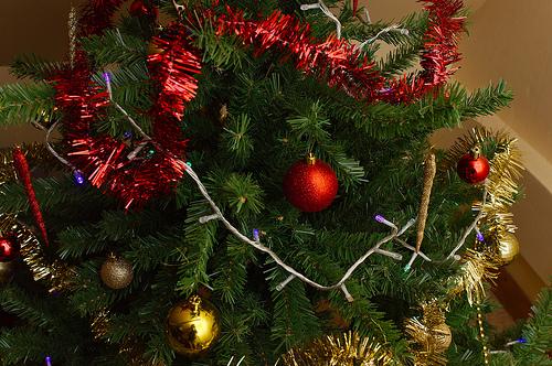 sapin, Noël, recyclage, déchets organiques, transplantation