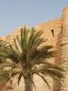 Djerba au patrimoine mondial de L'UNESCO