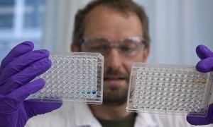 cancer, santé, biotechnologies, système immunitaire