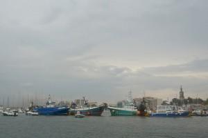 politique commune, surpêche, ONG, normes environnementales, viabilité