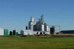 biocarburant, ONG, éthanol, politique énergétique
