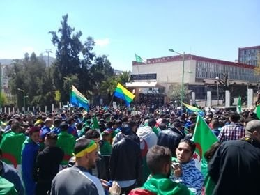 Manifestation au centre d'Alger