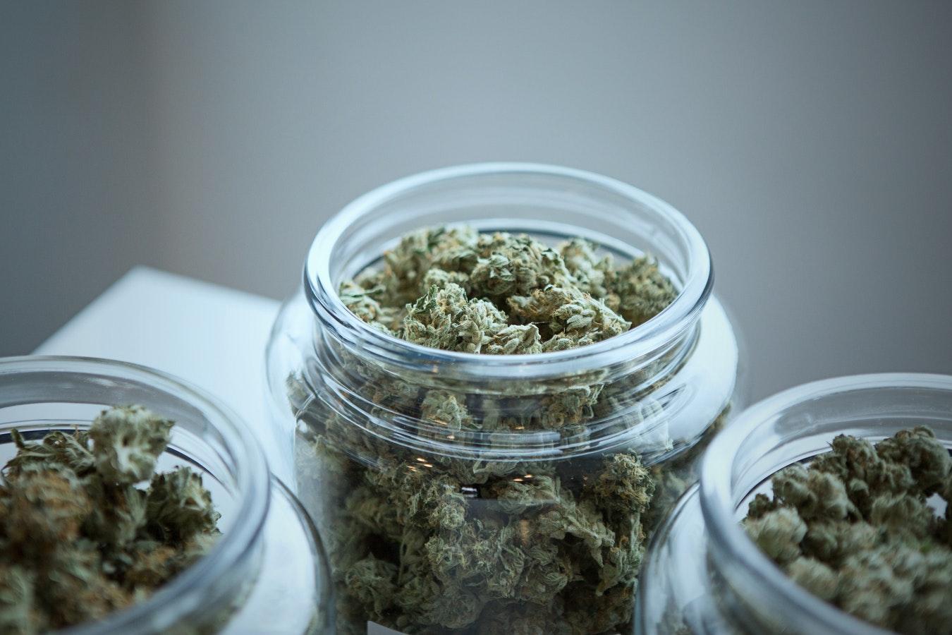 des boulettes de cannabis dans des bocaux
