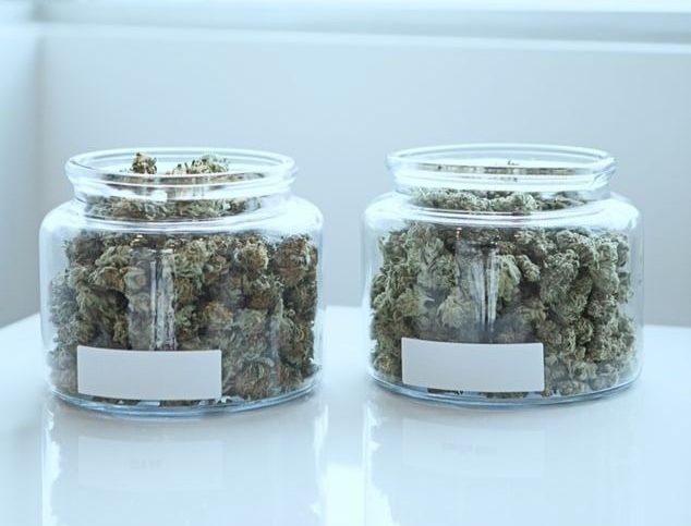 Du cannabis en boulettes dans des bocaux
