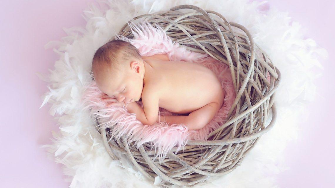 prénom bébé 2019