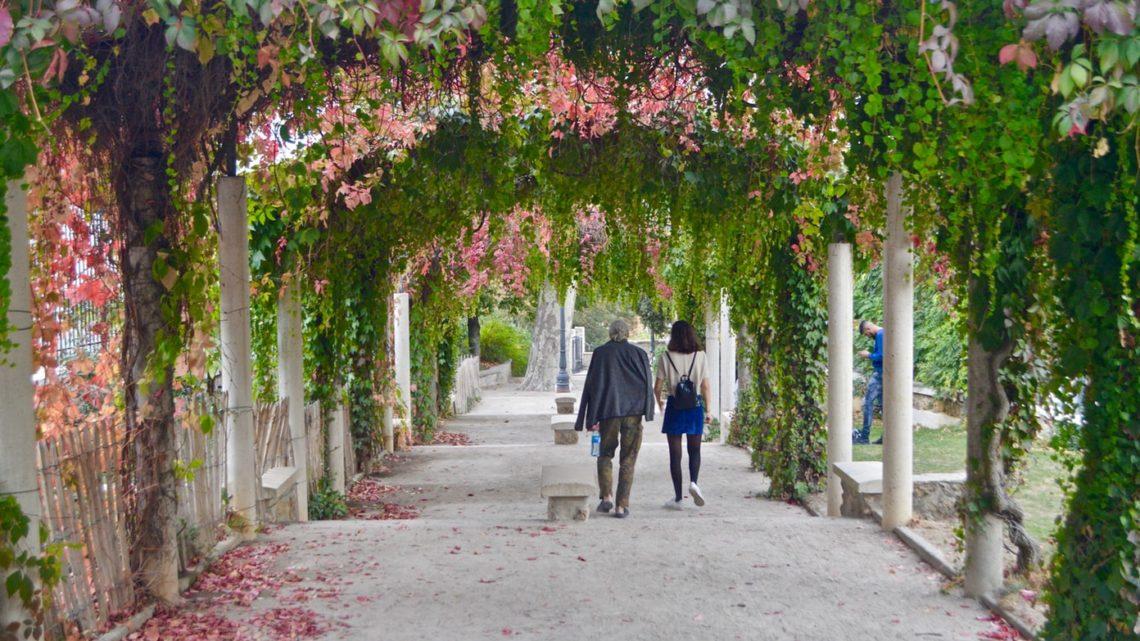 Un vieil homme et sa fille marchant dans une allée verdoyante.