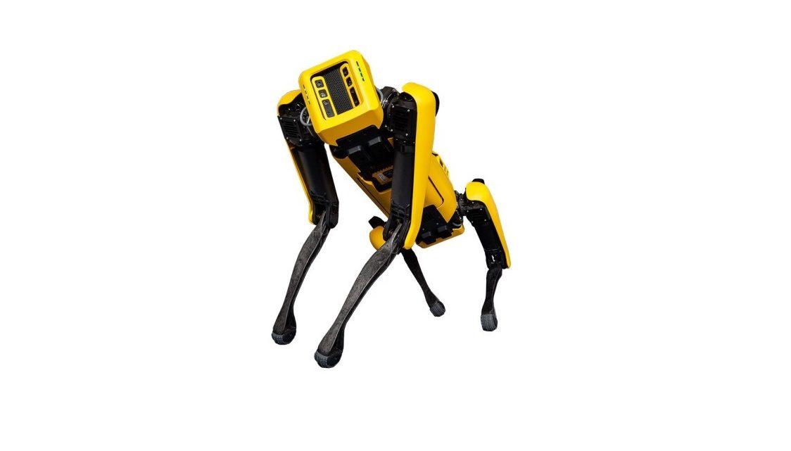 chien robot Spot