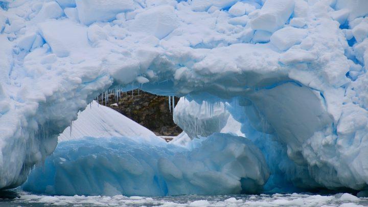 Antarctique verte