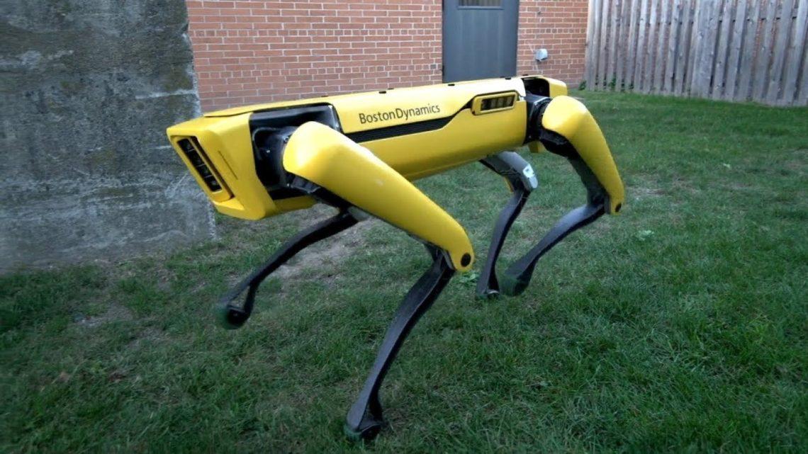 robots-chiens vente