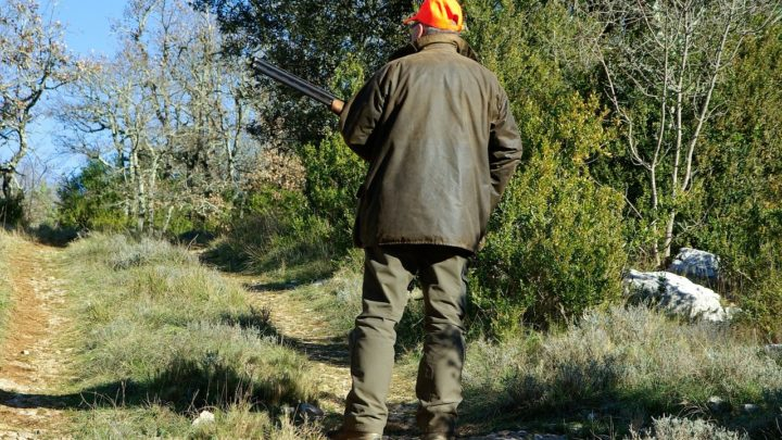 chasse dimanche