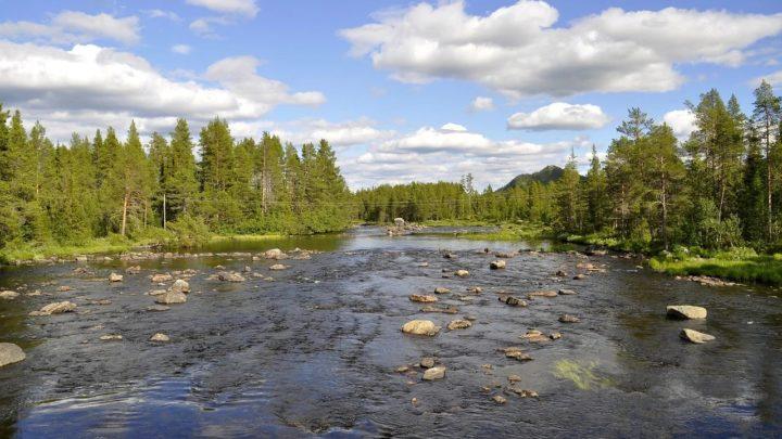 continent europeen habitats naturels degrades