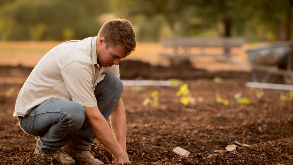 Une jeune agriculture au travail dans son exploitation.