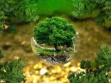 changement ecologie 2021