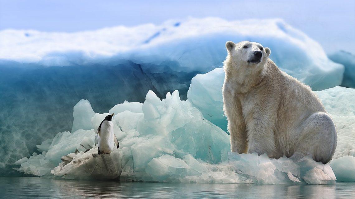 bouleversement climat Arctique