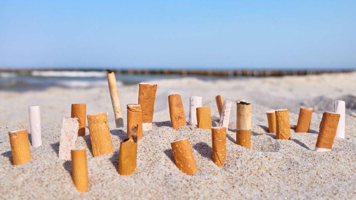 beachbot megots